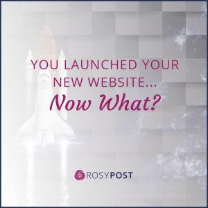 You launched your new website... now what?